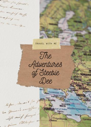 adventures of steebie dee